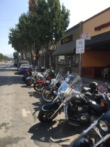 Eagle Adventure Tours - Harley_Tour-Highway_1 (10)